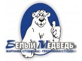 """Логотип ТОО """"РС """"Белый Медведь"""""""